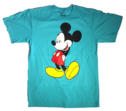 Adult Disney Outfit (Authentic Disney Mickey and Minnie Mouse Adult T-Shirts (Choose From Various Styles) (M, Turquoise ))
