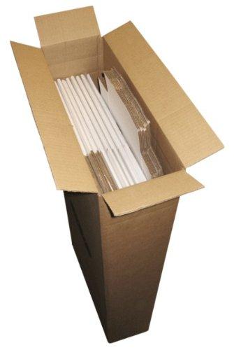 (10) largo Comic caja Master sobres - BCW marca: Amazon.es: Oficina y papelería
