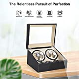 Automatic Watch Winder Display Box, 4+6 Automatic