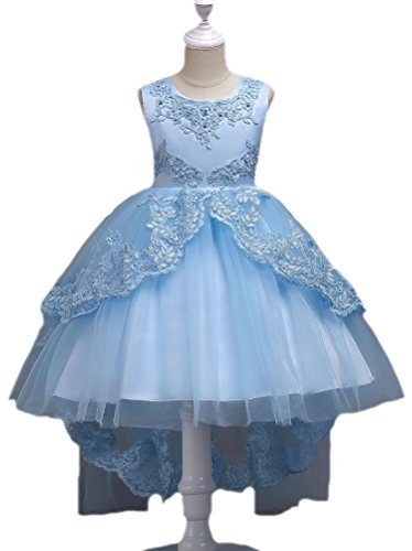 Horcute Lace Embroideried Party Train Flower Girls Dress Light Blue 130# 5-6Y (Blue Wedding Flowers Dresses)