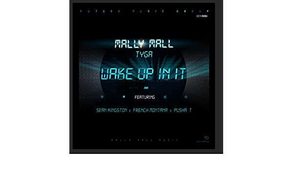 Wake Up In It (feat. Sean Kingston, French Montana & Pusha T ...