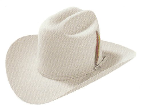 Stetson Men's 6X Silverbelly Rancher Fur Felt Cowboy Hat Silverbelly 7 1/2 (Fur Felt Hat)