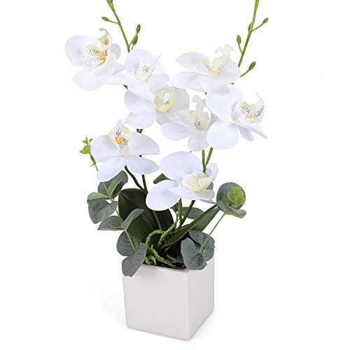 RERXN Artificial Orchid Bonsai Fake Orchid Arrangement 3 Heads PU Potted Phalaenopsis Plant for Home Party Decor