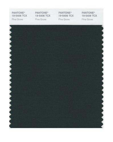 UPC 848826025650, Pantone 19-5406 TCX Smart Color Swatch Card, Pine Grove