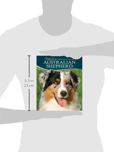 Australian-Shepherd-DogLife-Lifelong-Care-for-Your-DogTM