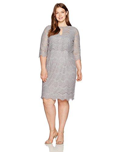 Alex Evenings Women's Plus Size Lace Jacket Dress, Silver, 16W (Alex Evenings Sequin Lace Bolero Jacket Dress)