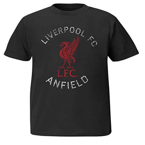 (VF LSG Soccer Liverpool Football Club Youth Soft Hand Logo Tee, Large, Black)