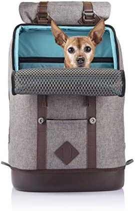 Kurgo Carrier Backpack Small Pets