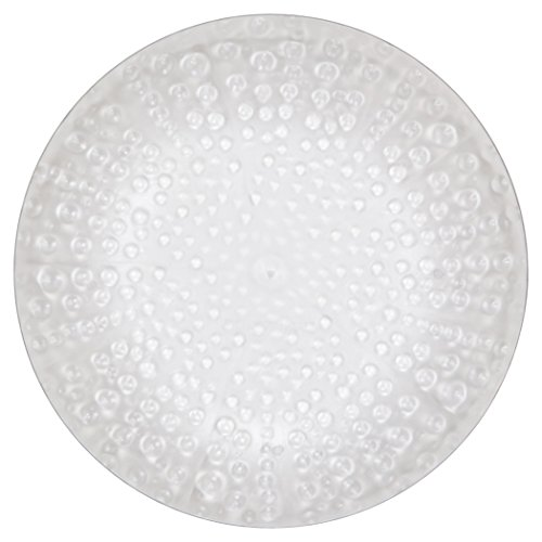 (MADHOUSE by Michael Aram 12-Count Clear Luncheon Plate, Coral)