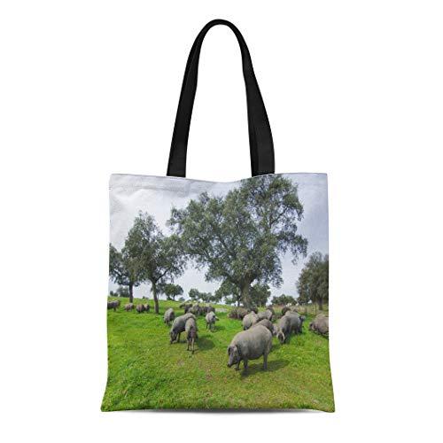 7fbeeafd5465 Semtomn Canvas Tote Bag Shoulder Bags Black Field Iberian Pigs in the  Spanish Countryside Green Women's Handle Shoulder Tote Shopper Handbag