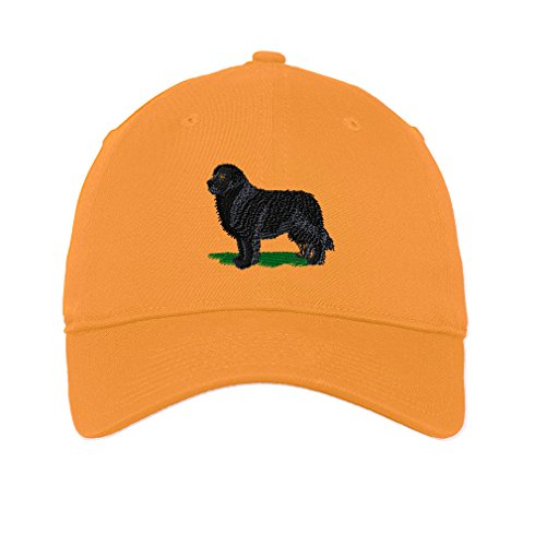 Newfoundland Twill Cotton 6 Panel Low Profile Hat Golden - Cap Baseball Newfoundland