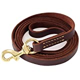 "Fairwin Leather Dog Leash 6 Foot - Best Dog Training Leash Heavy Duty for Large Medium Small Dogs (5/8"", Brown)"
