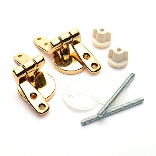 Bulk Hardware BH05718 Wooden Toilet Seat Hinge Pair, Polished Brass