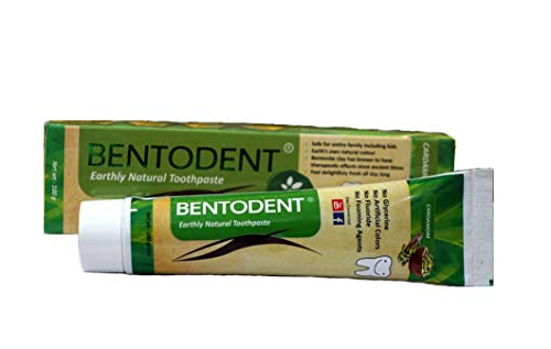 Bentodent Natural Toothpaste for Entire Family Incl Kids   the first toothpaste with goodness of Cardamom   Foam Free, Fluoride free   Freshens Breath, Protects Enamel, Strengthens Gums   Cardamom