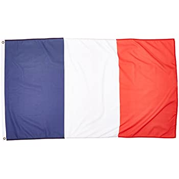 amazon com 3ft x 5ft france flag polyester 3x5 french flag