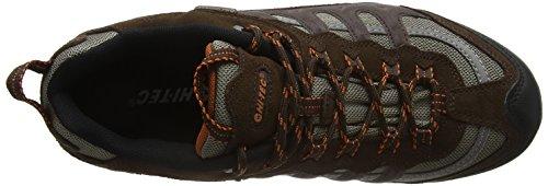 Hi-Tec Penrith Low Waterproof, Zapatillas de Senderismo para Hombre Marrón (Chocolate/orange)