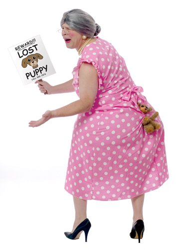 FunWorld Lost Puppy Humorous Costume