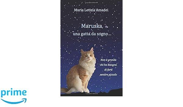 Maruska, una gatta da sogno... (Italian Edition): Maria Letizia Amadei: 9791220046206: Amazon.com: Books