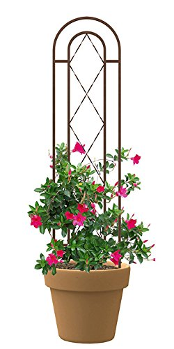 Panacea 83793 46'' Rustic Rust Twisted Wire Pot Trellis