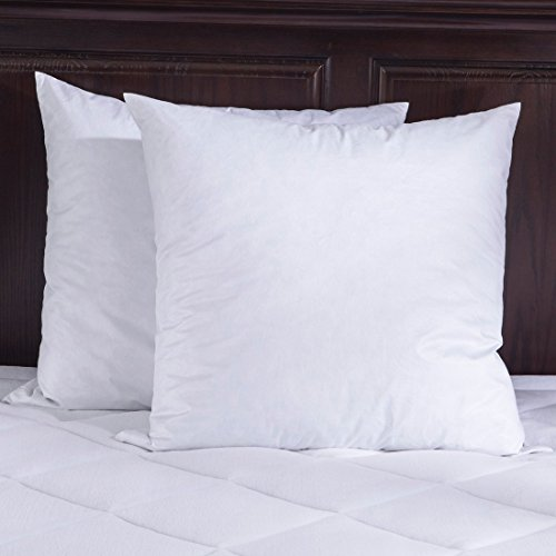 Best Pillow Inserts For Throw Pillows : Top 5 Best throw pillow insert 20x20 down for sale 2017 : Product : BOOMSbeat