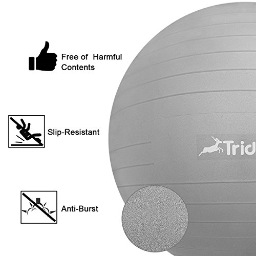 Trideer Exercise Ball Chair, Stability Ball with Ring & Pump, Flexible Seating, Improves Balance, Core Strength & Posture (Office & Home & Classroom) (Ball with Ring (Silver), 65cm) by Trideer (Image #4)