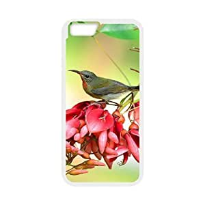 Case Cover For Apple Iphone 6 Plus 5.5 Inch Bird Phone Back Case Art Print Design Hard Shell Protection AQ073433