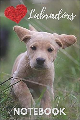 Buy Labrador Notebook: cute labradors gift for children who