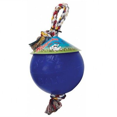 Romp-n-Roll Ball Dog Toy Color: Blueberry, Size: 6″, My Pet Supplies