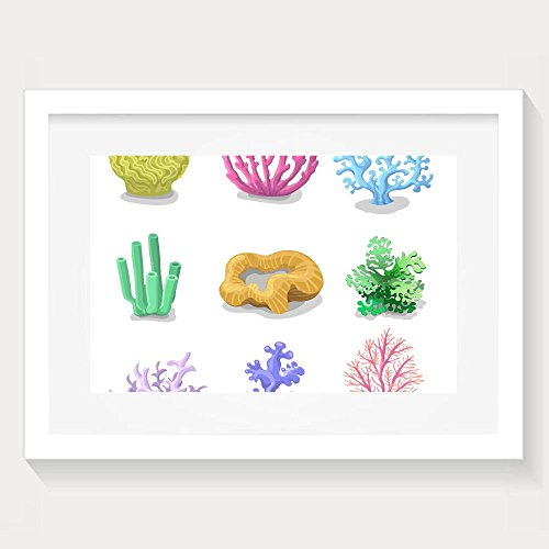 ZhiqianDF Unique Colorful Corals Reef Nature Underwater Fauna Framed Wall Art - Salt Eyeglasses Review