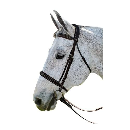 Image of Bridles Henri de Rivel Pro Mono Crown Fancy Bridle with Patent Leather Piping