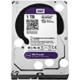 HD 1 Tb Wd Purple - Wd10Purz - Dvr