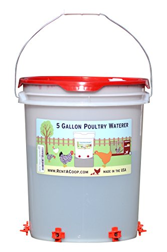 5 Gallon Chicken Waterer - 6 Horizontal Side Mount Poultry Nipples - For Up To 30 Chickens - Coop Feeder