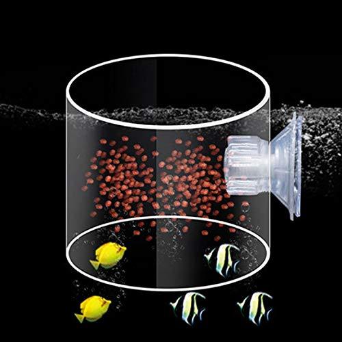 Costumi Goldyqin Aquarium Fish Feeding Circle Acrilico Alimentazione Anello Tromba SiYuan Aquarium Fish Feeding Anello Aquarium Fish Fish Tank