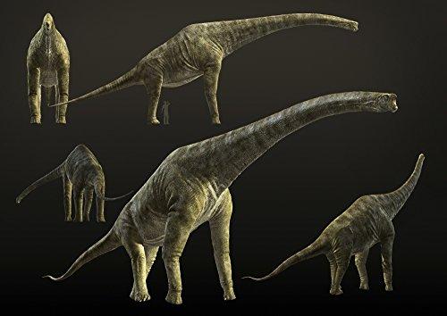 Posterazzi Giraffatitan brancai a sauropod dinosaur from the Late Jurassic period Poster Print (16 x 11)