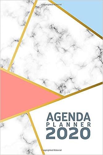 Amazon.com: Agenda 2020 Planner: Agenda 2020 Elegant ...