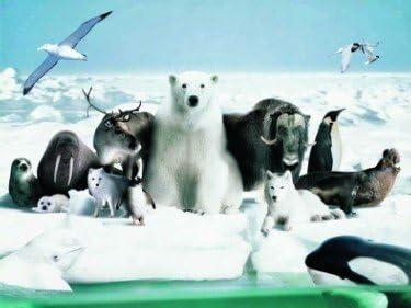 Imagen nevada 3D del polo norte ártico con oso polar blanco ...