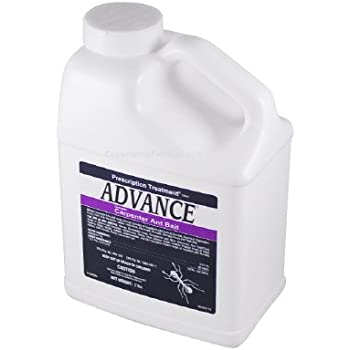 Amazon.com: Advance 375A Cebo para hormigas seleccionado en ...