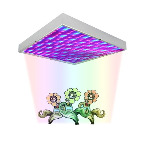 Nasa Led Light Plant - 7