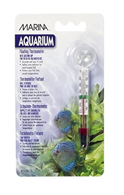 Marina Floating Thermometer with Suction Cup from Marina
