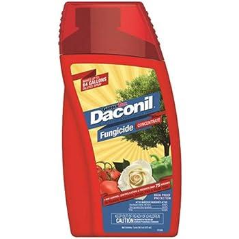 Daconil Fungicide Concentrate 16 oz.