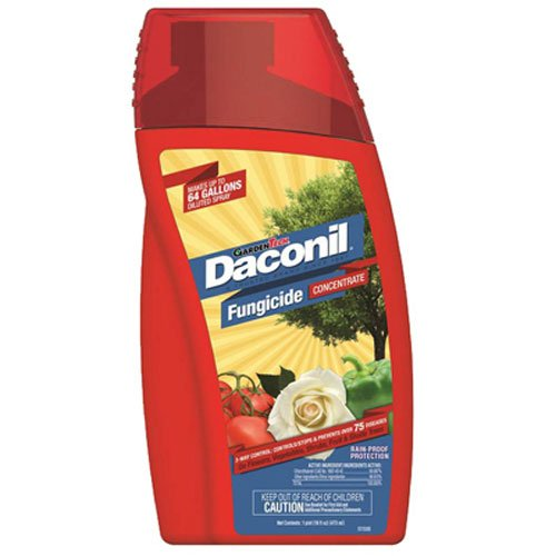 Potent Concentrate - Daconil Fungicide Concentrate 16 oz.