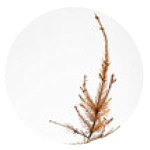 alfombrilla de ratón árbol de navidad muertos - ronda - 20cm