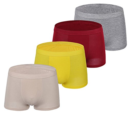 Respeedime Stretch 4 Pack Boxer Briefs For Men and Boys Underpants Mix5 4-Pack X-Large