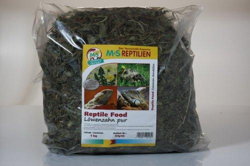 Lö wenzahn pur, getrocknet 1 Kg Deutsches Naturprodukt ! M&S Reptilien