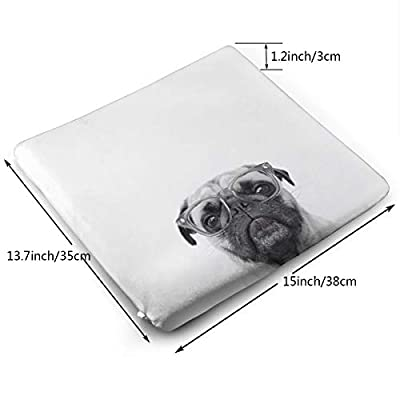 Sanghing Customized Glasses Bulldog 1.18 X 15 X 13.7 in Cushion, Suitable for Home Office Dining Chair Cushion, Indoor and Outdoor Cushion.: Home & Kitchen