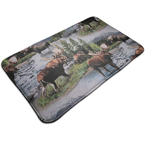 IPHUN Bull Moose Nature Scenic Wildlife Animals Lake Memory Foam Bath Mat Non Slip Absorbent Super Cozy Bathroom Rug Carpet ()