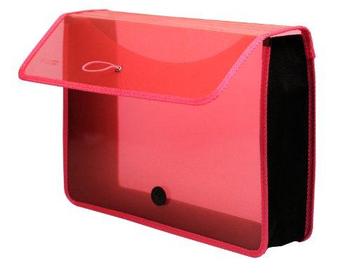 Lion Expand-N-File Poly Expanding Wallet, Transparent Pink (48160-PK)
