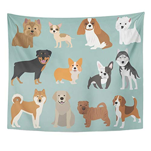y Species of The Breeds Dogs Corgi Akita French Bulldog Lapdog Beagle Spaniel Husky Yorkshire Terrier Chihuahua Rottweiler Decor Wall Hanging Picnic Bedsheet Blanket 60x50 Inches ()
