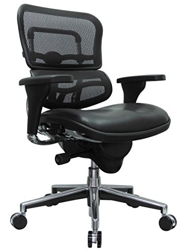 Eurotech Seating Ergohuman LEM6ERGLO(N) Mid Leather Seat/Mesh Back Swivel Chair, Black (Ergohuman Mesh Eurotech)