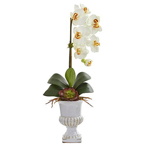 Nearly Natural 1604-CR Phalaenopsis Orchid and Succulent Artificial Urn Silk Arrangements, Cream